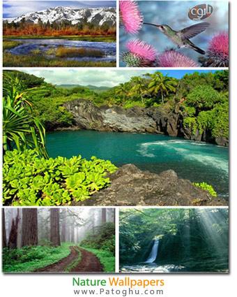تصاویر پس زمینه جدید و جذاب از طبیعت Nature Wallpapers