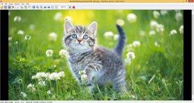 دانلود نرم افزار حرفه ای نمایش تصاویر در ویندوز IrfanView 4.50