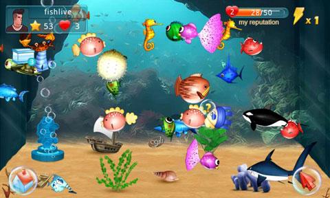fish-live-3