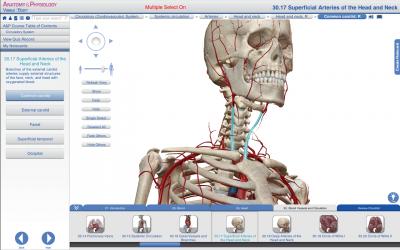 نرم افزار حرفه ای آناتومی و فیزیولوژی بدن انسان Anatomy And Physiology for Windows Desktop